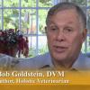 Bob Goldstein